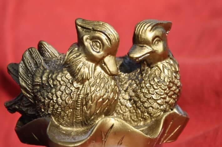 mandarínske kačky ako najpopulárnejší symbol lásky vo Feng Shui